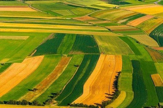Изменения в законодательстве об обороте земель сельскохлзяйственного назначения